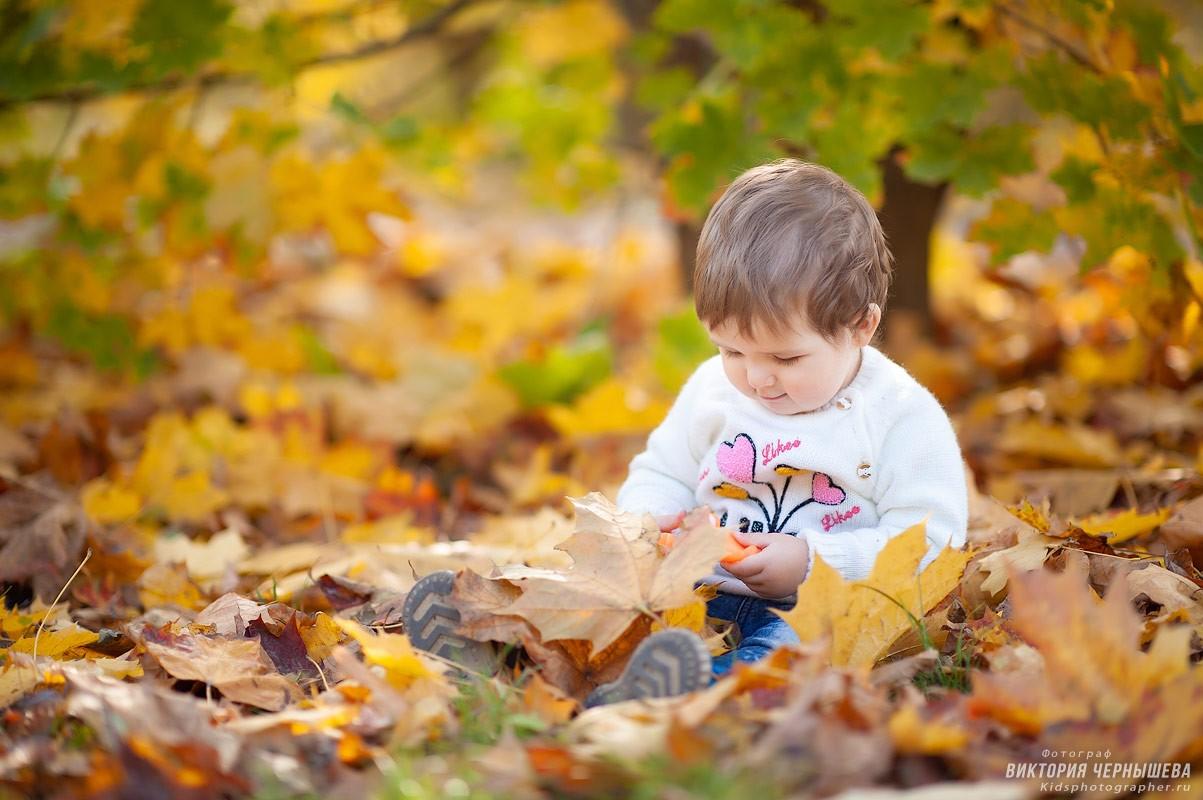 девочка играет с осенними кленовыми листьями